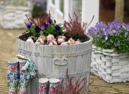 il Blog di Ciarlot pensando al giardino
