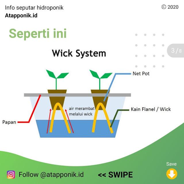 hidroponik-metode-wick