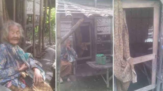 Hidup sebatang kara, nenek tua ini gerogoti bambu dinding rumahnya untuk masak