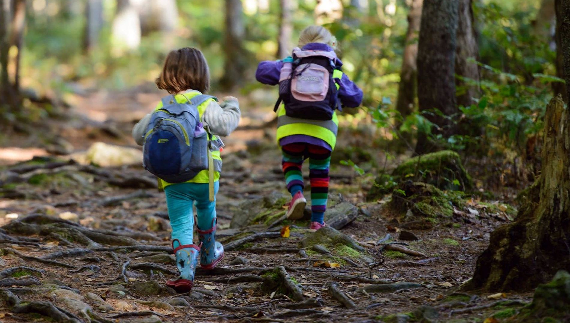 Ecological education in early preschool age || objectives and nature of environmental education || environment education definition for kids