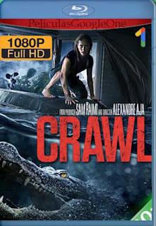 Infierno En La Tormenta (Crawl) [2019] [1080p Web-Dl] [Latino-Inglés] [GoogleDrive]