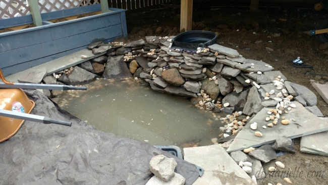 Additional rock, water, and waterfall added to the pond setup.