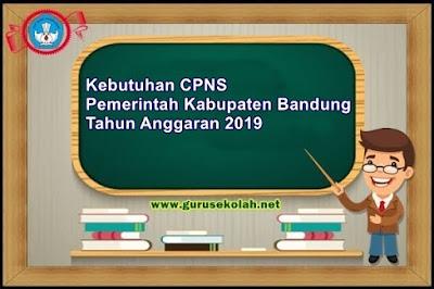 Kebutuhan CPNS Pemerintah Kabupaten Bandung Tahun Anggaran 2019