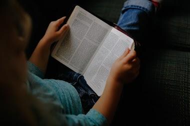 La oralización no garantiza una mejor comprensión lectora