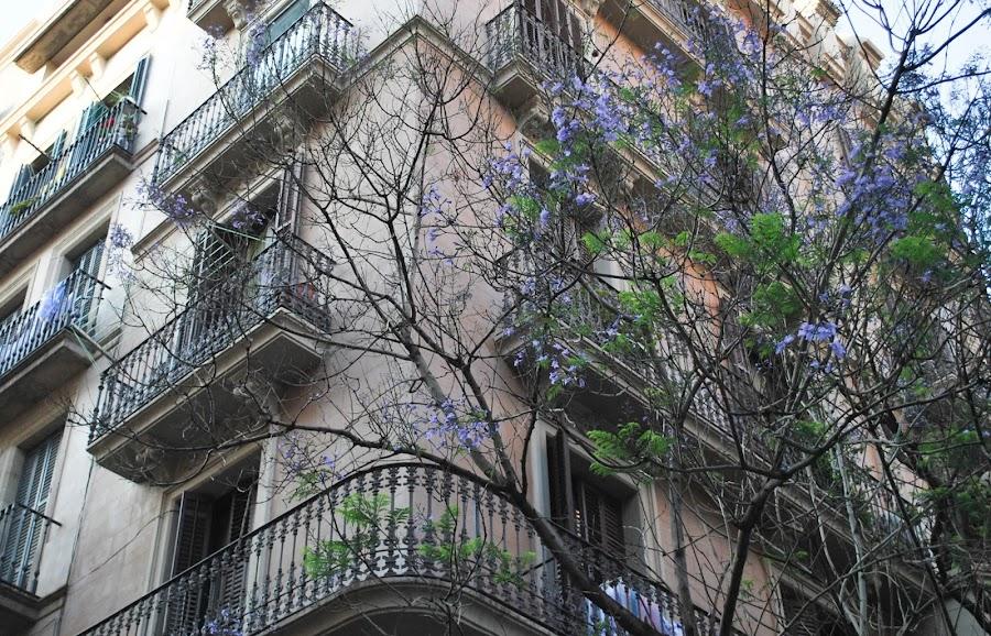 http://www.mylittlebrunch.com/2014/06/el-born-que-ver-y-donde-comer.html #barcelona #bestplacesofbarcelona