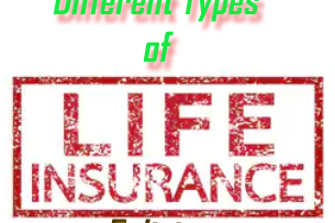 Different Types of Life Insurance Policies
