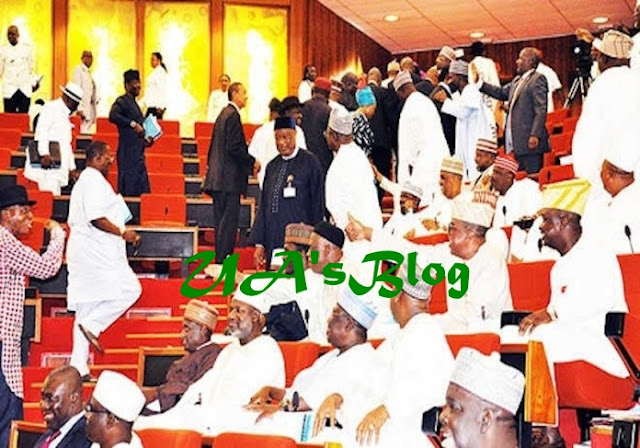 JUST IN: Senate Rejects Inclusion Of South East In Security Council