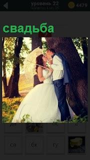 В парке под деревом женщина и мужчина во время свадьбы целуются прикрываясь зонтом