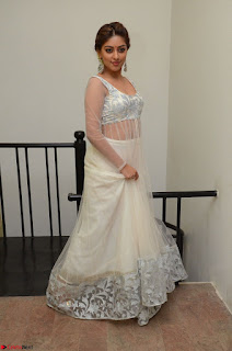Anu Emmanuel in a Transparent White Choli Cream Ghagra Stunning Pics 034.JPG