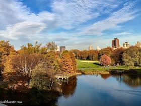 central park - turtle pond