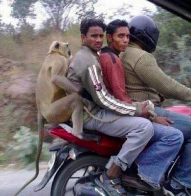 India negara yang SUPER UNIK !