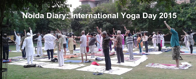 5-Day Yoga Camp at Sector 31 Park, Noida