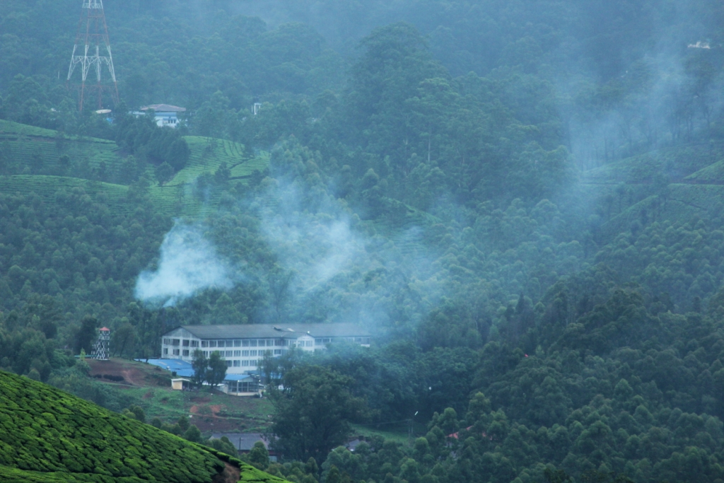 Mystic valleys of Munnar in Monsoon