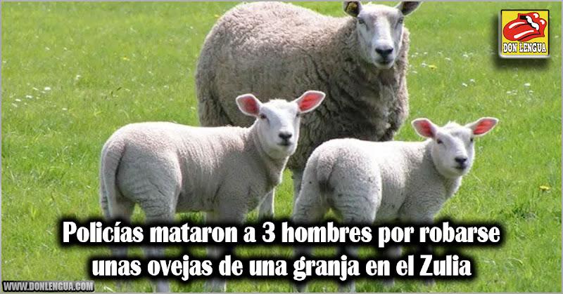 Policías mataron a 3 hombres por robarse unas ovejas de una granja en el Zulia