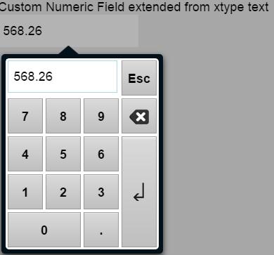 Customized numeric field | The versatile Ext js Modern toolkit