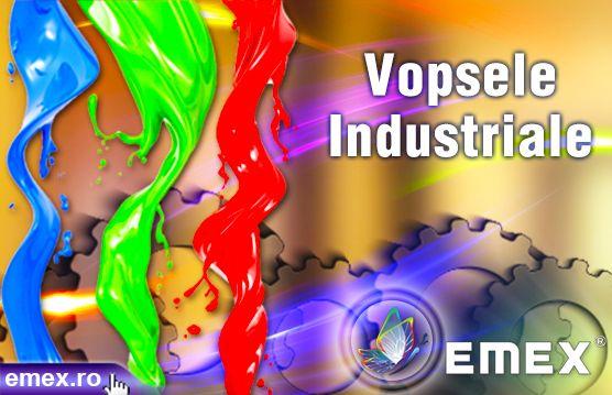 Vopsele profesionale pentru industrie