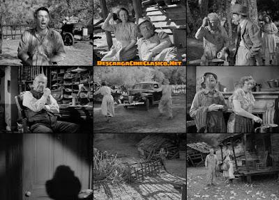 Fotogramas: La ruta del tabaco (1941) Tobacco Road - Descargar