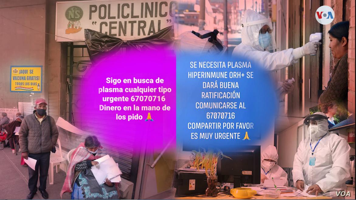 Bolivianos desesperados usan las redes sociales para pedir a recuperados de COVID-19 les vendan plasma, en la imagen algunos de esos mensajes / Yuvinka Gozalvez Avilés/VOA