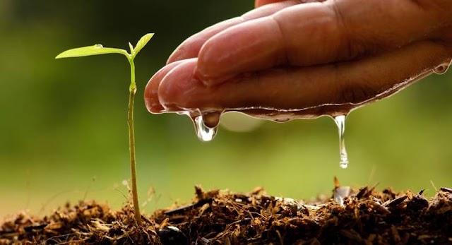विश्व प्रकृति संरक्षण दिवस: जानिए क्या है इसका उद्देश्य