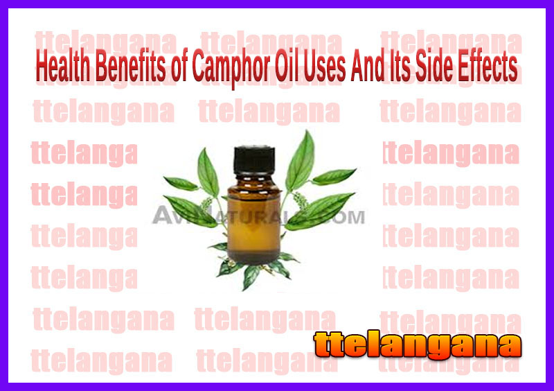 Health Benefits of Camphor Oil Uses And Its Side Effects