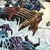 Justice League #55 İnceleme