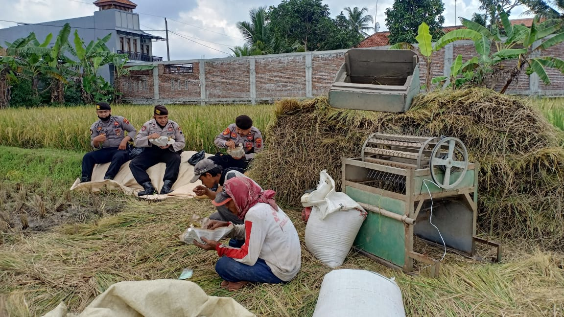 Akrab, Polisi Kebumen Makan Siang Bareng Petani di Pematang Sawah