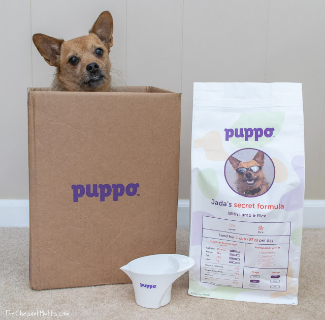 puppo custom dog food