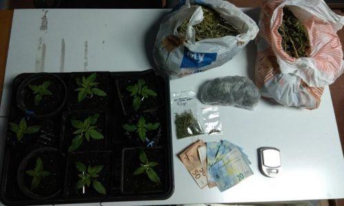 Σε περιοχή των Ιωαννίνων συνελήφθη από αστυνομικούς του Τμήματος Δίωξης Ναρκωτικών της Υποδιεύθυνσης Ασφάλειας Ιωαννίνων ημεδαπός που κατηγορείται για καλλιέργεια, κατοχή και διακίνηση ναρκωτικών.