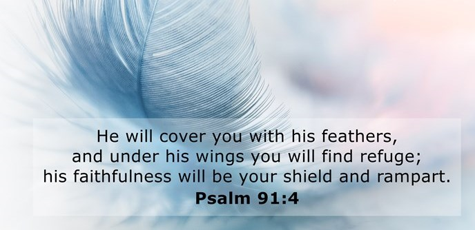 He will cover you with his feathers, and under his wings you will find refuge; his faithfulness will be your shield and rampart.