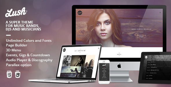Music Band and Musician WordPress Theme