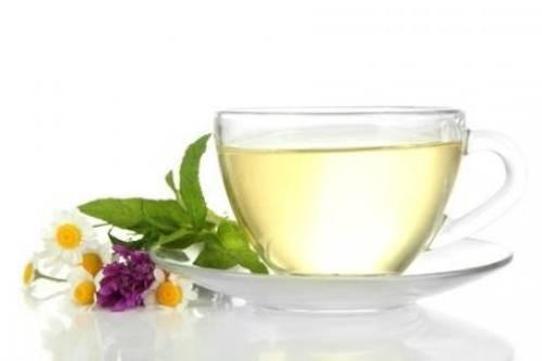 Khasiat Dan Manfaat White Tea Untuk Kesehatan