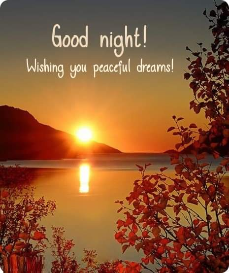 New Good Night Hindi Images Status Shayari Download For Whatsapp , Fb