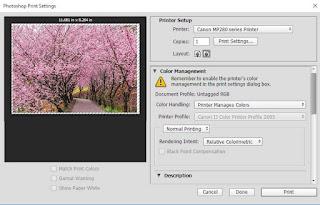 Hasil preview foto masih memiliki tepi atau border