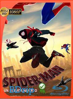 Spider-Man: Un Nuevo Universo (2018) BDRIP1080pLatino [GoogleDrive] SilvestreHD