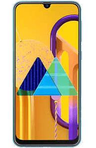 Firmware Samsung M30s SM-M307F