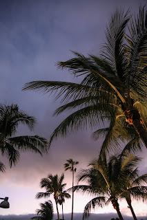 sunset wedding reception on captiva island