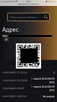 скрин биткоин кошелька в ммм 2021