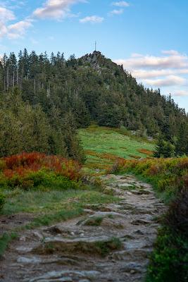 Künischer Grenzweg auf den Osser | Wanderweg La1 im Lamer Winkel | Wandern im Bayerischen Wald | Naturpark Oberer Bayerischer Wald 08