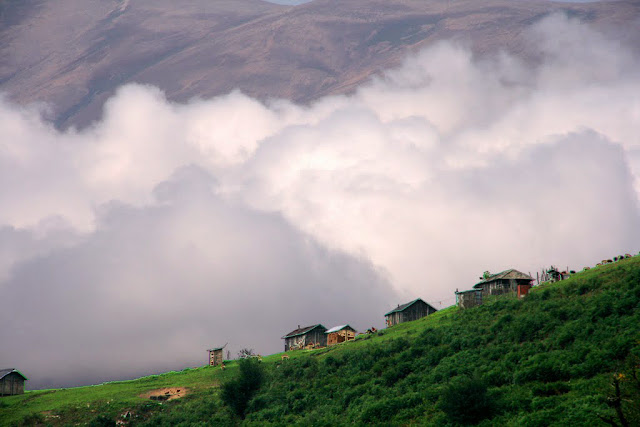 Rural houses in the mountain forest in the north of Iran.