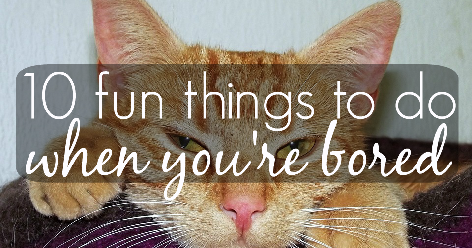 10 Fun Things To Do When You're Bored