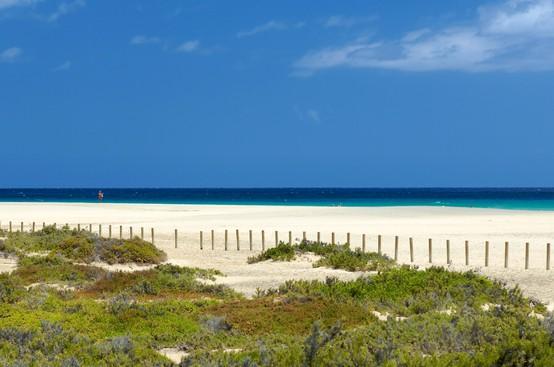 LA FOTO DEL DIA Beach in Fuerteventura 1