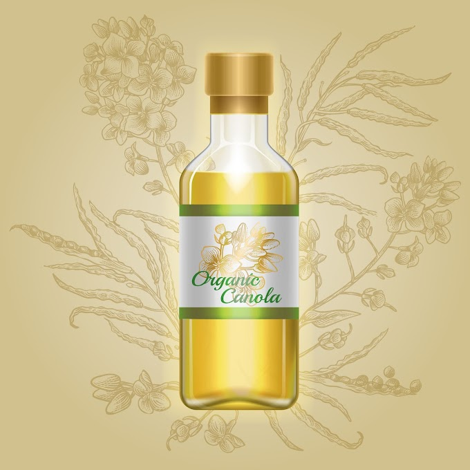Europe dominated the Canola Oil Market owing to growth and availability of rapeseed crushing in the regions