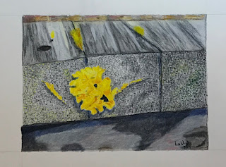 colour aquarelle pencil drawing of yellow fungus growing on wood, artist Linzé Brandon