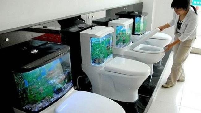 حوض سمك الحمّام