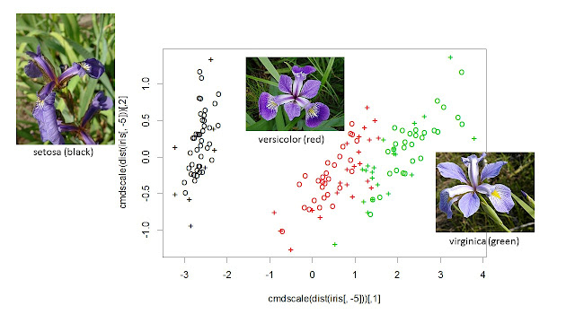 Using Support Vector Machines as Flower Finders: Name that