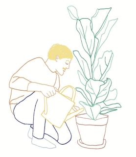 prendre soin des plantes Youloune broderie confinement