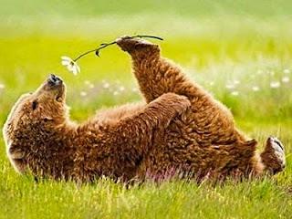 Весна сочинение