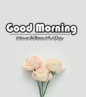 New Good Morning 4k Full HD Images Download For Daily%2B92