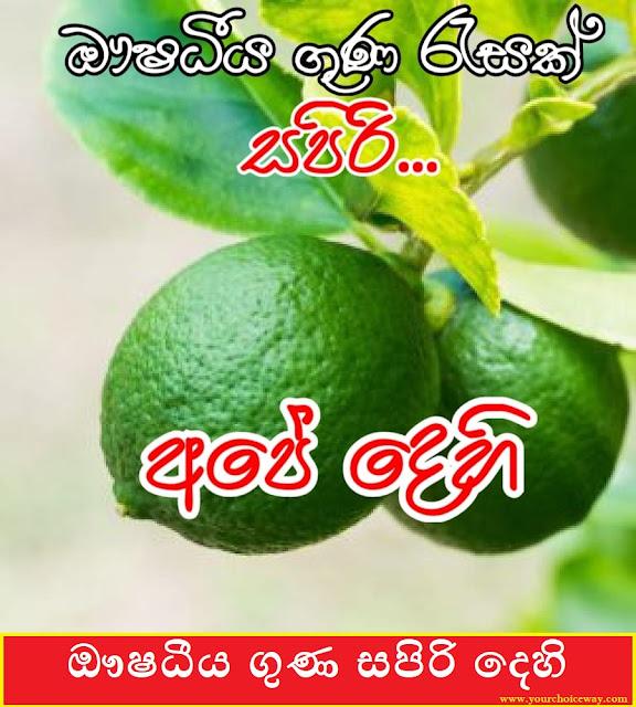 ඖෂධීය ගුණ සපිරි දෙහි ( Dehi ) [ Lemon ] - Your Choice way