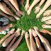 Macam-Macam Kelompok Sosial Menurut Robert Bierstedt